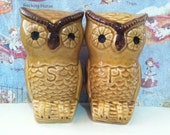 Vintage Antiques Retro Woodsy Owls Salt and Pepper Shakers Collectibles Figurines or Cake Toppers
