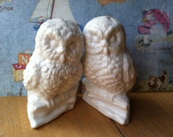 RARE Vintage Antique Bone China Owls on Branches Salt and Pepper Shakers Collectibles or Cake Toppers