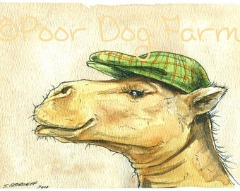 Imprudent Camel in a Hat - Print