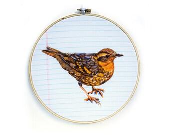 Embroidery Hoop Art - Varied Thrush -  Bird Wall Hanging
