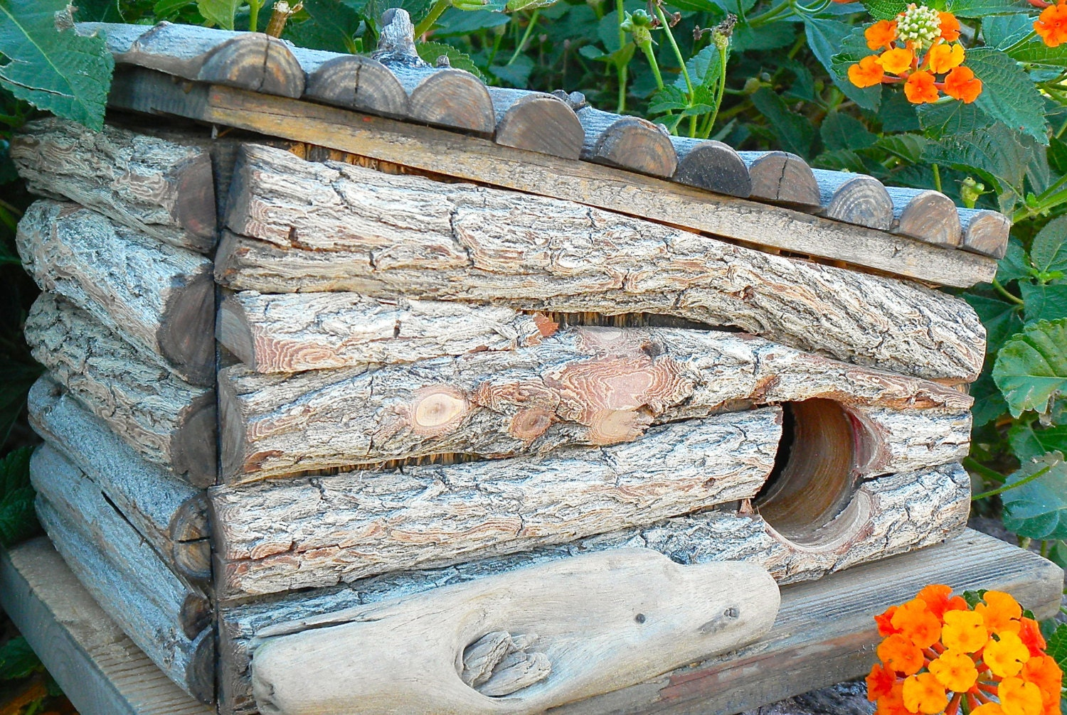 rustic log cabin birdhouses - photo #34