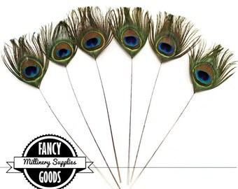 6 - Stripped - Peacock Feather Picks - Millinery - Bridal -  Bouquets