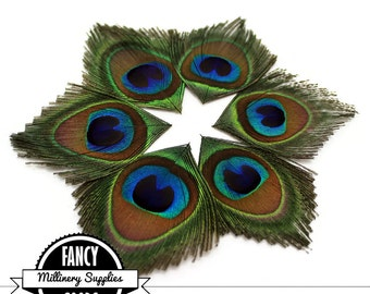 6 - Cut - Peacock Feather Eyes - Leaves - Millinery - Fascinators