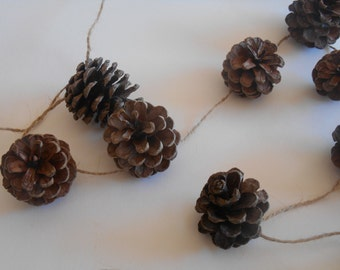 Pine Cone Rustic Twine Garland 10ft