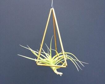 Air Plant Geometric Himmeli Hanger - small triangle - brass