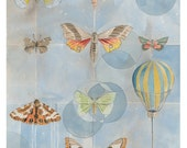 Flight Collection Greeting Cards - Set of 5 - 5x7 Blank - Butterflies - Hot Air Balloon