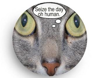Funny Fridge Magnet for Cat Lover, Fridge Magnet for Cat Owner