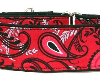 Red Swirls Martingale Collar-