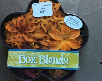 Petaloo Flower Box Blends orange/burgundy