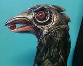 Helmeted Raven Walking Stick