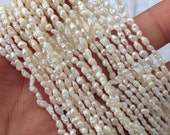 "Seed Pearl Baroque Rice Pearl Freshwater Pearl ivory white 2-3mm----15"" full strand 110 pieces #SD7006---NEW ARRIVAL"