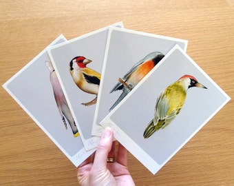 4 Birds - Mini Print Set