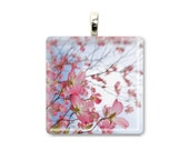 "Pink Spring Flower Jewelry - Pink Dogwood Blossom Photo Pendant - Glass Tile Photo Pendant - ""Dogwood Stretching"""