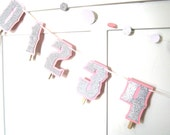 1st 12 Months Photo Banner or GRADUATION Banner - 1st Birthday Banner - Silver Glitter on Baby Pink - You Choose Color