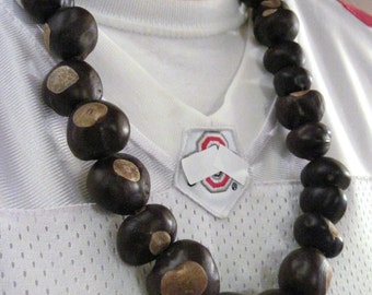 Ohio Buckeye Necklace All Real OHIO Buckeyes