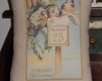 Vintage Style Christmas Birds Christmas Pillow