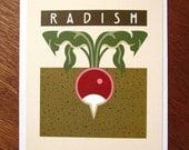 Radish  Blank Note Card