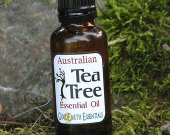 TEA TREE  Essential Oil - one of the most popular oils in aromatherapy