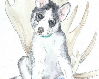 SIBERIAN HUSKY PUP Original Watercolor on Ink Print Matted 11x14 Ready to Frame