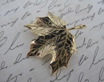 Pretty Maple Leaf Pin