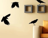 Vinyl Wall Decals - Crows Wall Decal - Birds - SALE 20 Buckaroos