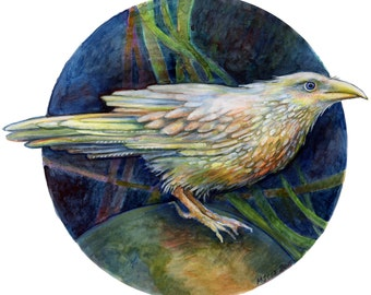 Original Watercolor - White Raven on Top of the World - Original painting
