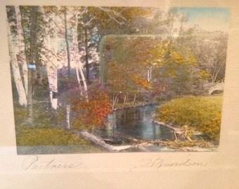 Vintage David Davidson Hand Tinted Photograph Original Frame Signed Birch Trees Stream