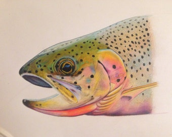 "SMALL 8.5x11"" Cutthroat Trout Print limited edition"
