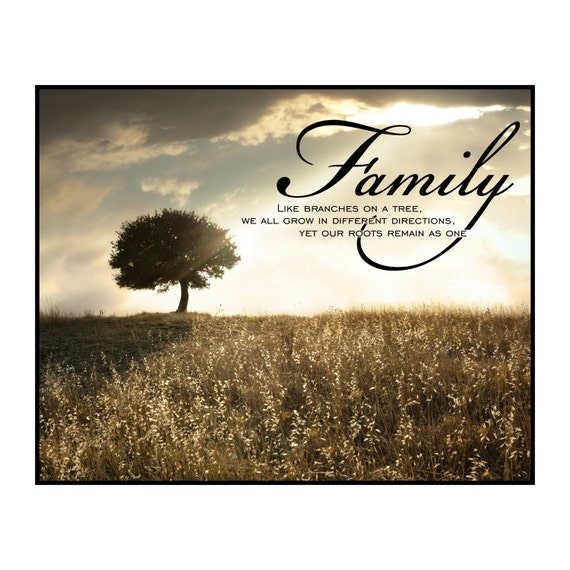 Like Branches On A Tree We All Grow In Different Directions Yet Our Roots Remain The Same Family Printed Wood Sign Wall Decor 12x15