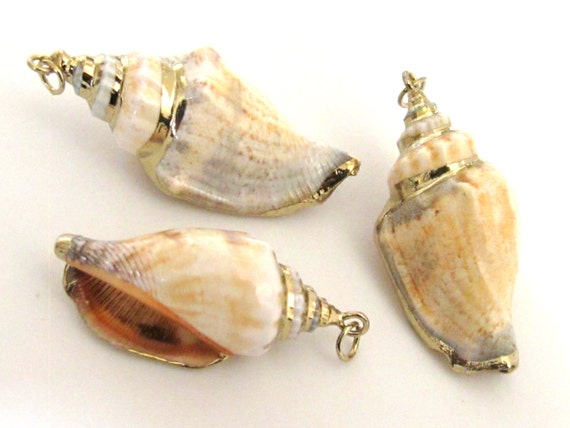 1 Pendant - Gold plated brown spiral conch shell pendant - SP039