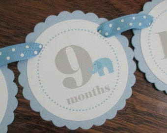 READY to SHIP Little Peanut BOY: Just Born/0-12 mos Picture Banner. First Birthday Banner. Light Blue. Elephant. Quick Ship. Baby Blue. Male