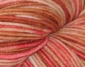 Pink and Tan OOAK 100% Superwash Merino DK Yarn