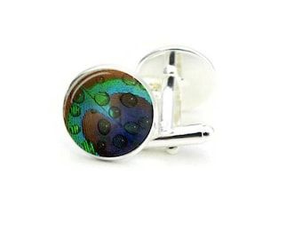 Peacock Eye Cuff Links Water Droplets on Peacock Eyespots From Feather Modern Cuff Links Blue and Green Men Accessory Animal Cuffs Handmade