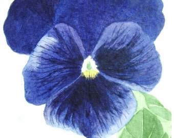 Aceo Original watercolour painting of a Pansy.