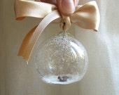 Christmas ball with sea lion