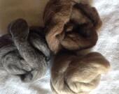 Trio Shetland Wool Roving 3oz Wool Fiber