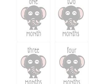 Baby Elephant Milestone Monthly Onesie Stickers