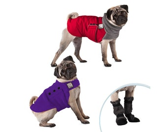 PUG Cold Climate Special, Dog Winter Coat, Dog Sweater, Dog Booties