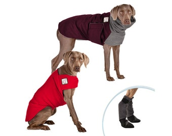 WEIMARANER Cold Climate Special, Winter Coat for Dogs, Dog Sweater, Fleece Sweater, Dog Booties, Dog Boots, Waterproof Dog Coat, Dog Clothes