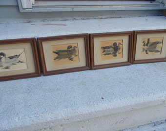 """SALE-4 Vintage Decoy Pictures-Wood Framed-Collectible- by Artist, """"Richard Sloan"""" dated 1981."""