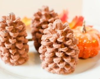 Pinecone Soap - holiday soap - Autumn soap - rustic soap - Woodland soap  - Alpine Frost scented - Maple Leaf Oak
