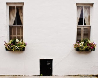 Window flower box in charleston south carolina photography for Home decor charleston sc