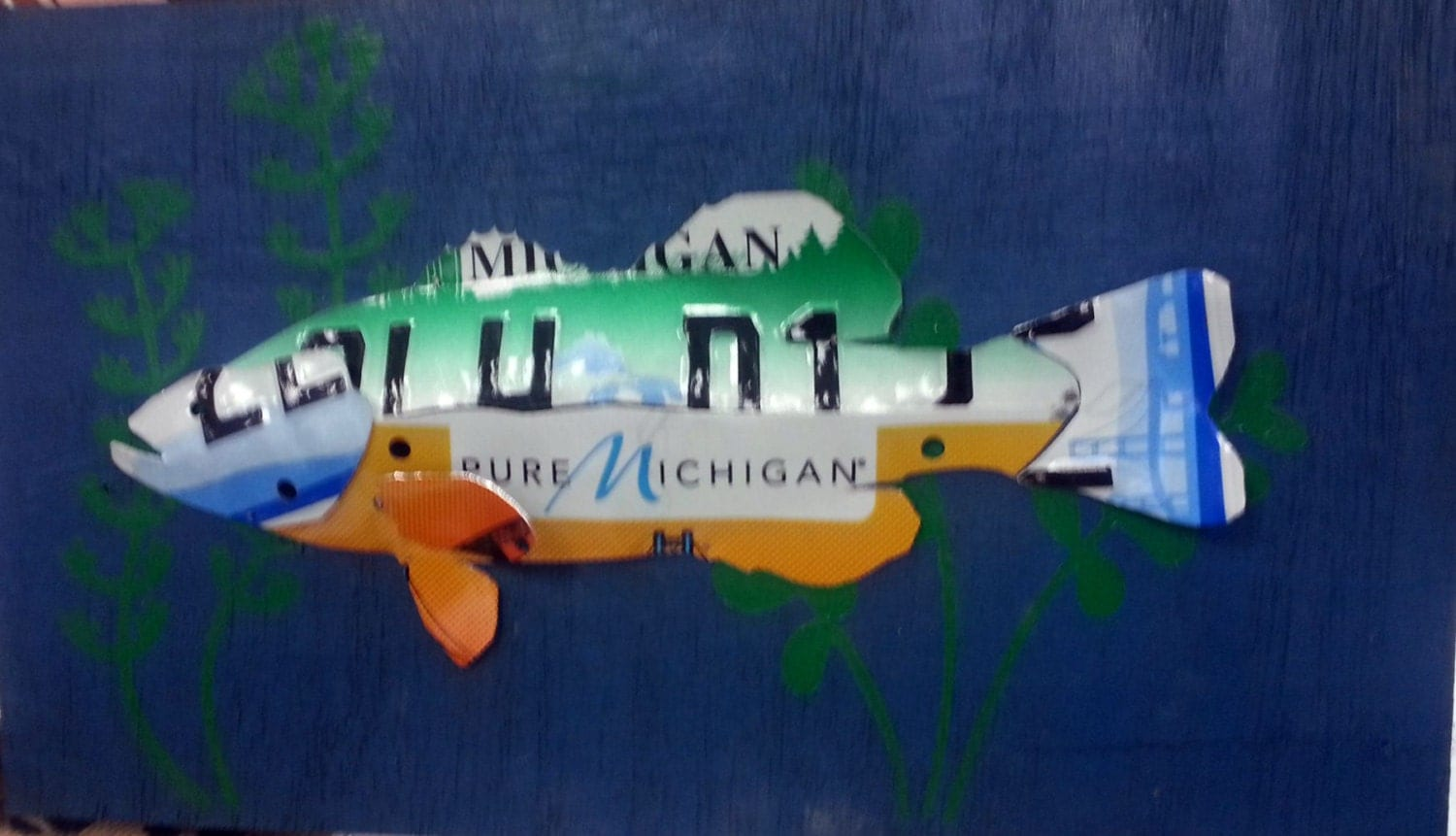 Fish license plate art wall decor bass by for Colorado fishing license age
