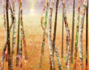 Golden Meadows 01: Giclee Fine Art Print 13x19