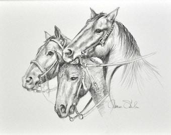 Original Pencil Drawing of Three Horses