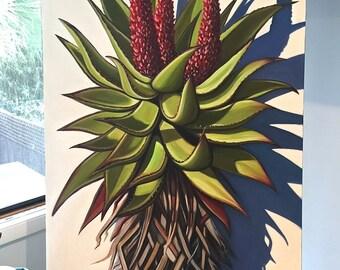 Original oil Aloe by Carin Vaughn