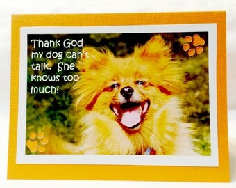 Thank God my Dog can't talk, he knows too much Pomeranian Note Card  Blank Inside  Set of 2