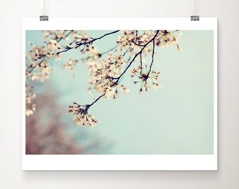 cherry blossom photograph blossom tree photograph pink flower photograph pastel home decor nature photography botanical print