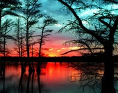 Sunset of a Lifetime at Reelfoot Lake Fine Art Print, firey red, vibrant, lake, sunset, blue, water, cypress, trees, nature photography
