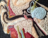 Anatomical Study of the Inner Ear in Wool